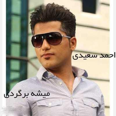 دانلود آهنگ احمد سعیدی بنام میشه بگردی